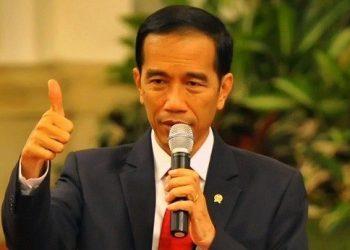 Presiden Jokowi Dodo/Ist.net